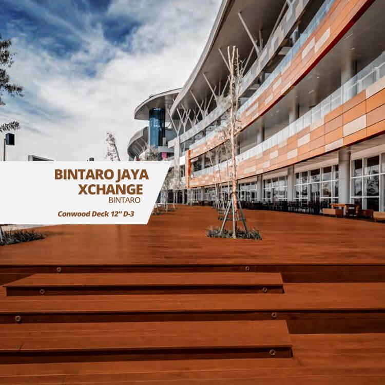 BINTARO-JAYA-XCHANGE2